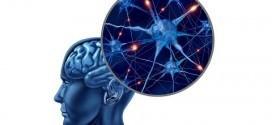 controlul asupra creierului uman
